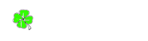 Adara Eventos - Team Building Madrid